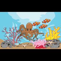 Image Click to Read: Animal Habitats
